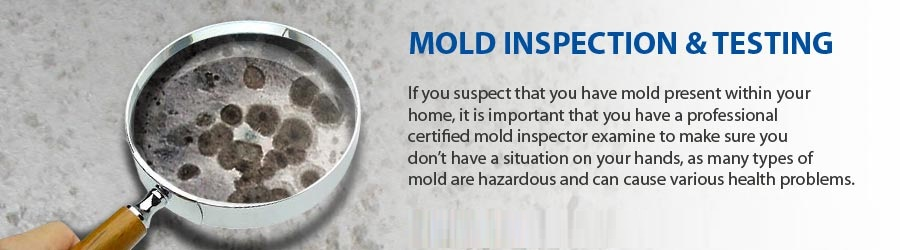 Orange County CA Mold Inspector
